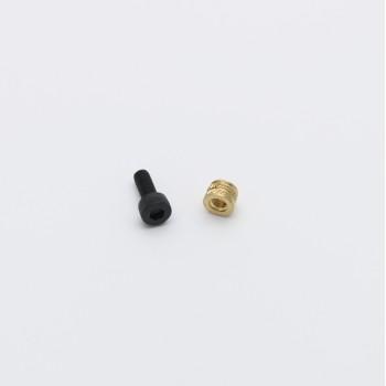 M2 Heatset and M2/10mm Black Oxide Hex Cap Screw